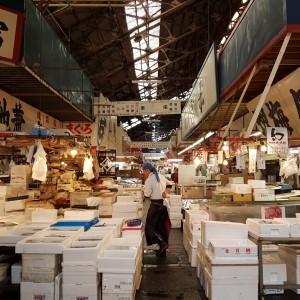fish market tokyo Tsukiji