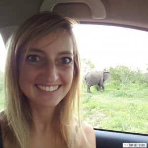 Elephant Selfie at Kruger Park