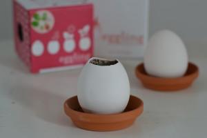 moederdag cadeau eggling
