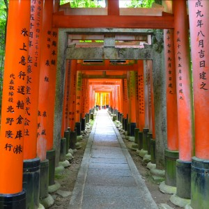 red gates Fushimi Inari-taisha kyoto