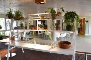 hotel blooming bergen aan zee noord holland