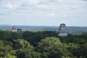 temples tikal guatemala